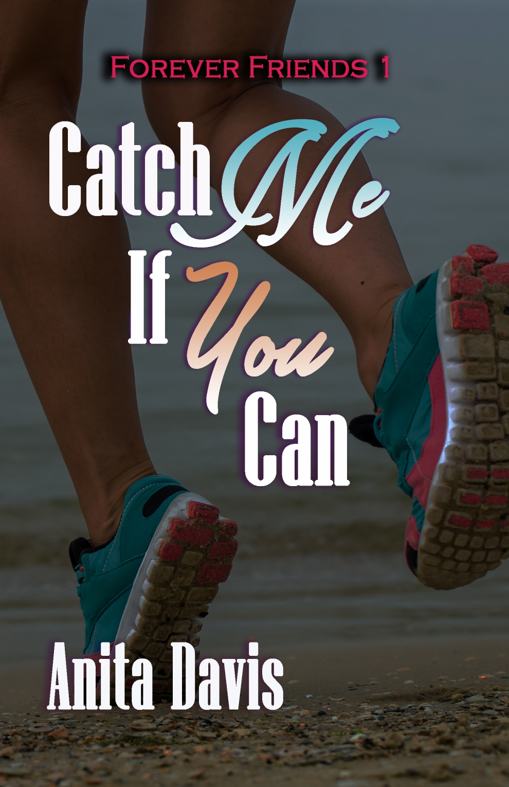 Catch Me If You Can 2017 Front Cover Final Option[9672].jpg